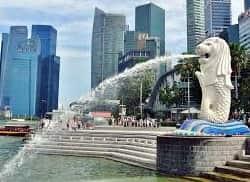 新加坡色情